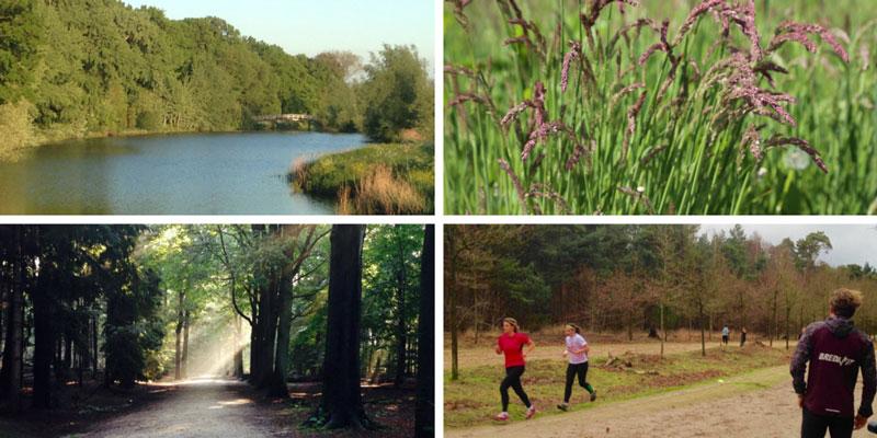 5 wellbeing trends: contact met de natuur | trendbubbles.nl