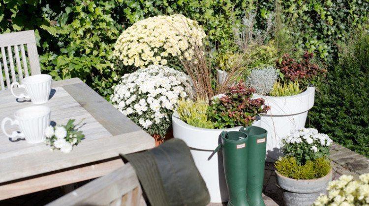 Najaars 'Comfortabel & Luxe' trend in de tuin