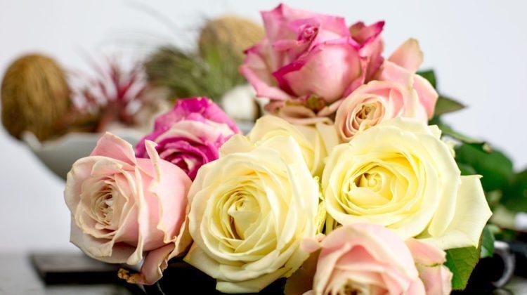 047 – Waarom Je Een Bos Bloemen van Mij Krijgt