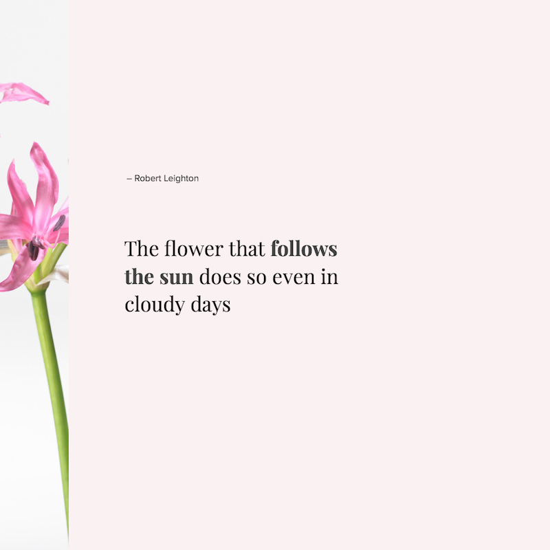 The flower that follows the sun does so even in cloudy days - Robert Leighton