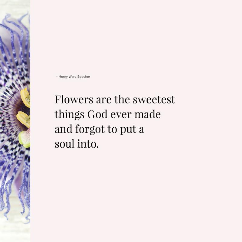 Hele mooie bloemen gezegden